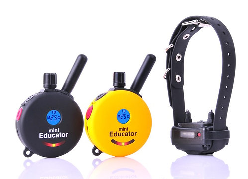 ET-300 2T Mini Educator with Double Transmitter