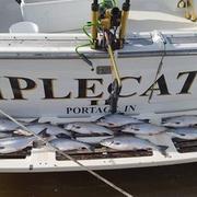 Triple-catch-charter-boat.jpg