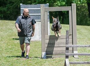 Dog_training_idy.jpg