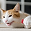 Thumbnail: 美國 p.l.a.y貓貓系列 Twice as Mice