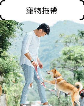 寵物拖帶.jpg