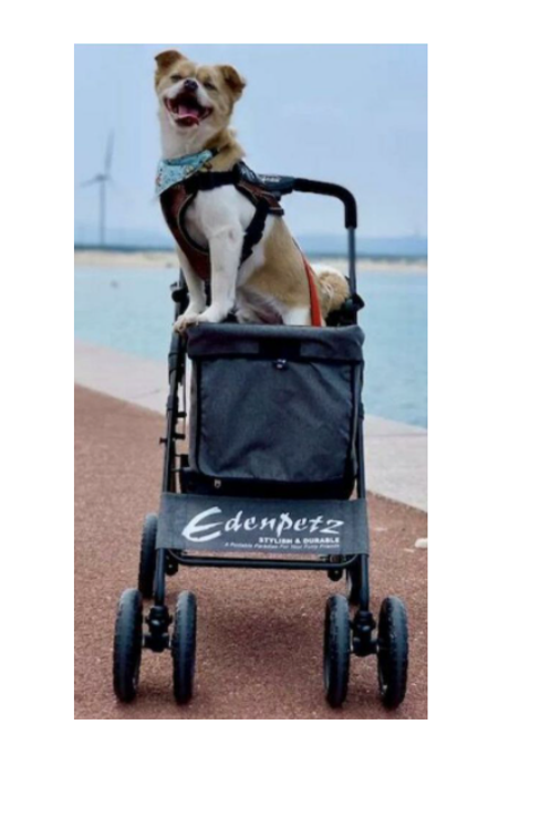 EdenPetz 寵物車