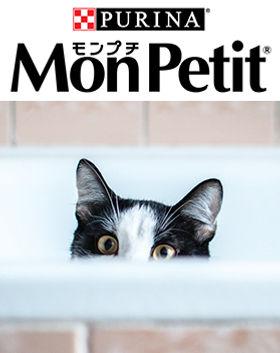 MON-PETIT.jpg