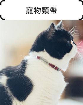 寵物頸帶.jpg