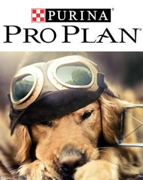 PROPLAN.jpg