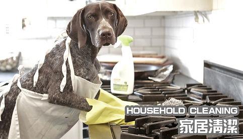 HOUSEHOLD-CLEANING.jpg