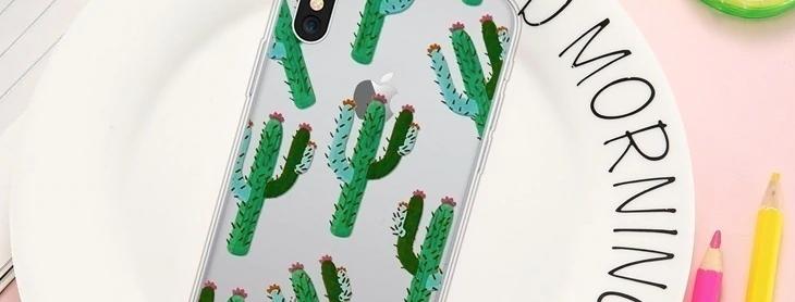 BD Cactus