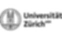 2018-Netzwerk-uzh-logo.png