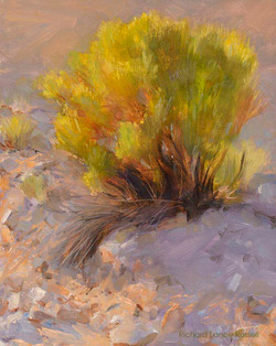 Arroyo's Edge Painting by Richard Lance Russell