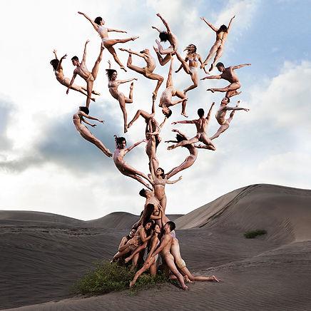 photos-danseurs-gravite-12.jpg