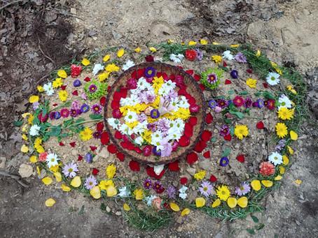 Reflections on The Flowjo's Death (Summer Newsletter)