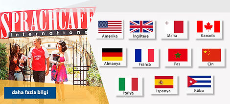 Sprachcaffe Languages Plus.jpg