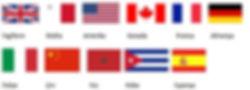 Sprachcaffe bayraklar.JPG
