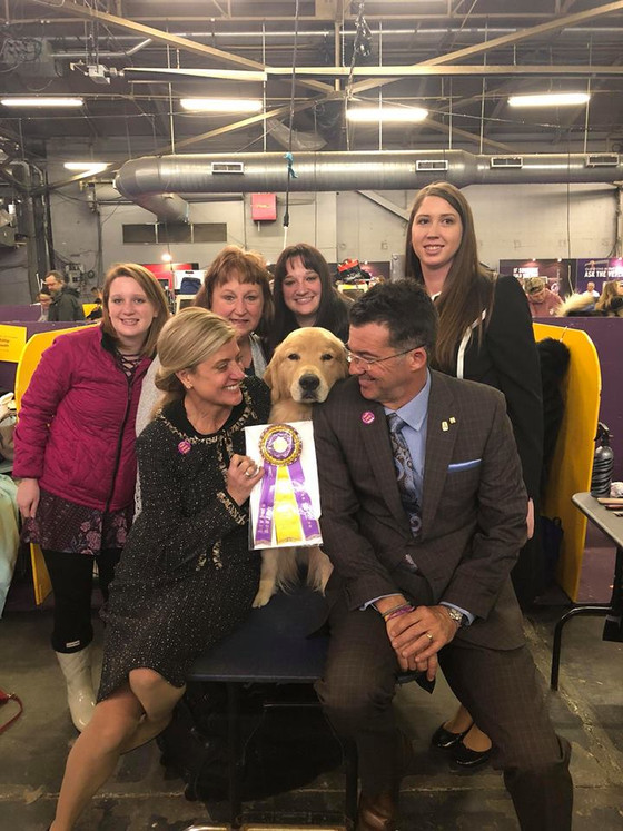 Westminster 2018 - Riese Best of Breed!