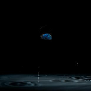 Earthrise_66x100cm-new.jpg