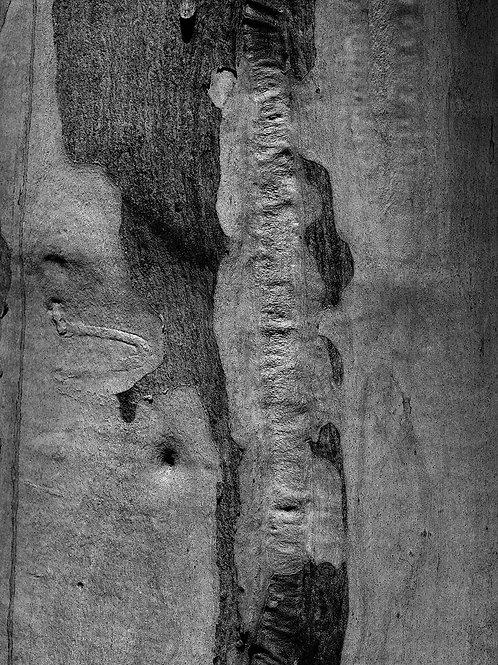 Portraits of the Elderly #2 - 40x30cm