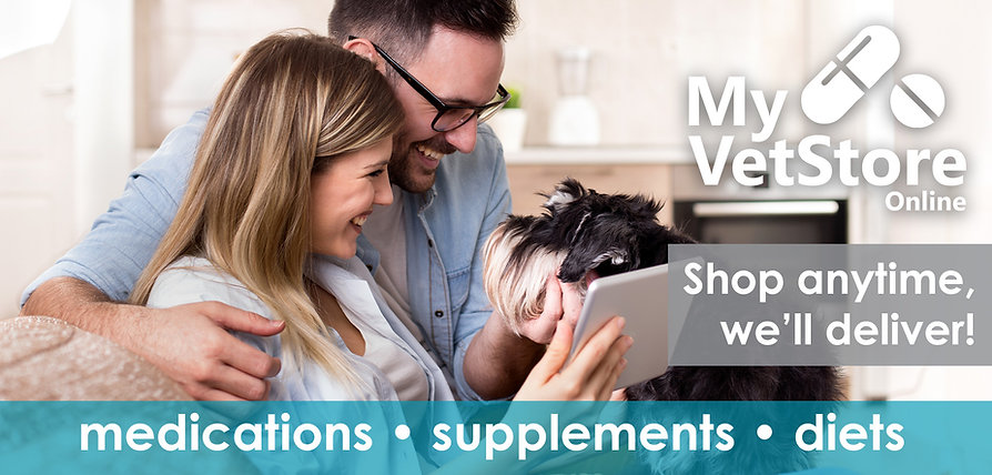 MyVetStore Online Online Pet Pharmacy medications supplements diets toys shampoo treats dog cat small animals delivery