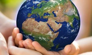 Ecologia e nonviolenza: il XXIV Convegno di Teologia della pace