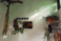 09FDD914-CA3A-4173-AF79-B4E6DC1F6C3E.JPG
