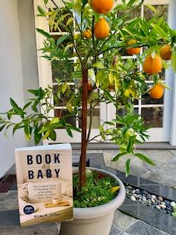 book with oranges