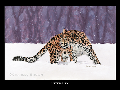 """Intensity"" 16"" x 20"" Single Matte Giclee Print"