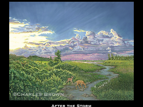 """""""After the Storm"""" - 16"""" x 20"""" Single Matte Giclee Print"""