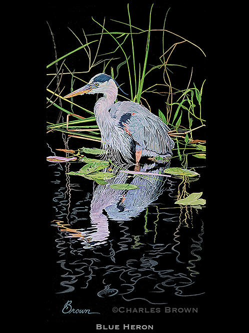 """Blue Heron"" - 12"" x 24"" Original Acrylic"
