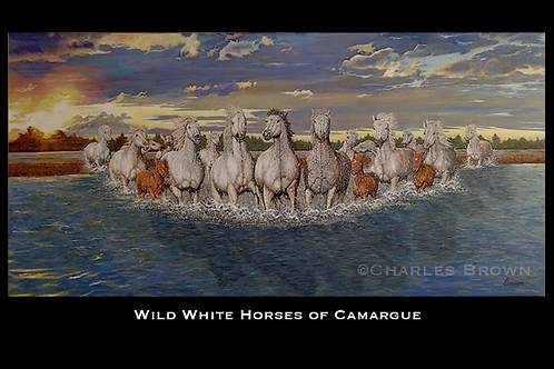 """Wild White Horses of Camargue"" - 24"" x 48"" Acrylic Original - Prints Available"
