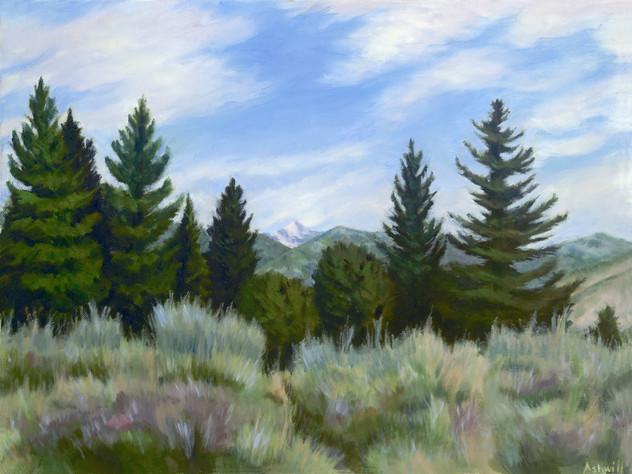 Yellowstone View