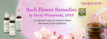 Holistic remedy facebook banner graphic