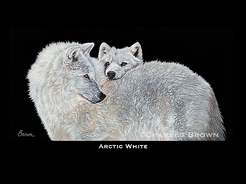 """Arctic White"" 16"" x 20"" Single Matte Giclee Print"