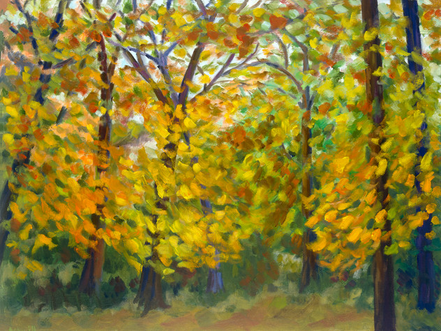 Autumn In Motion no.1