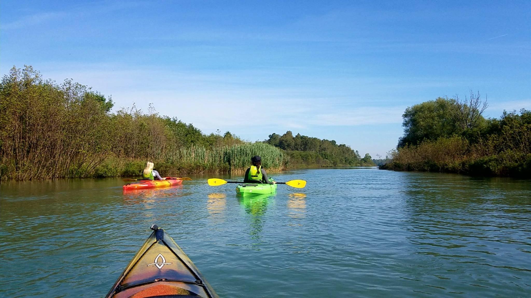 Lower River Islands 2hr