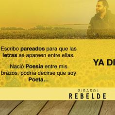 Cabecera twiter Un girasol rebelde.jpg