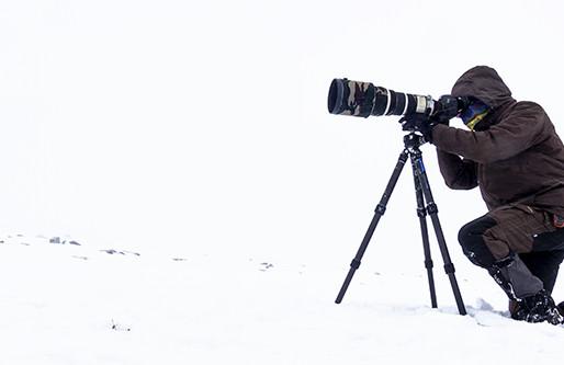 REVIEW: LeoFoto Ranger LS-365C + LH-55