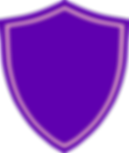 shield-308943_1280_edited.png
