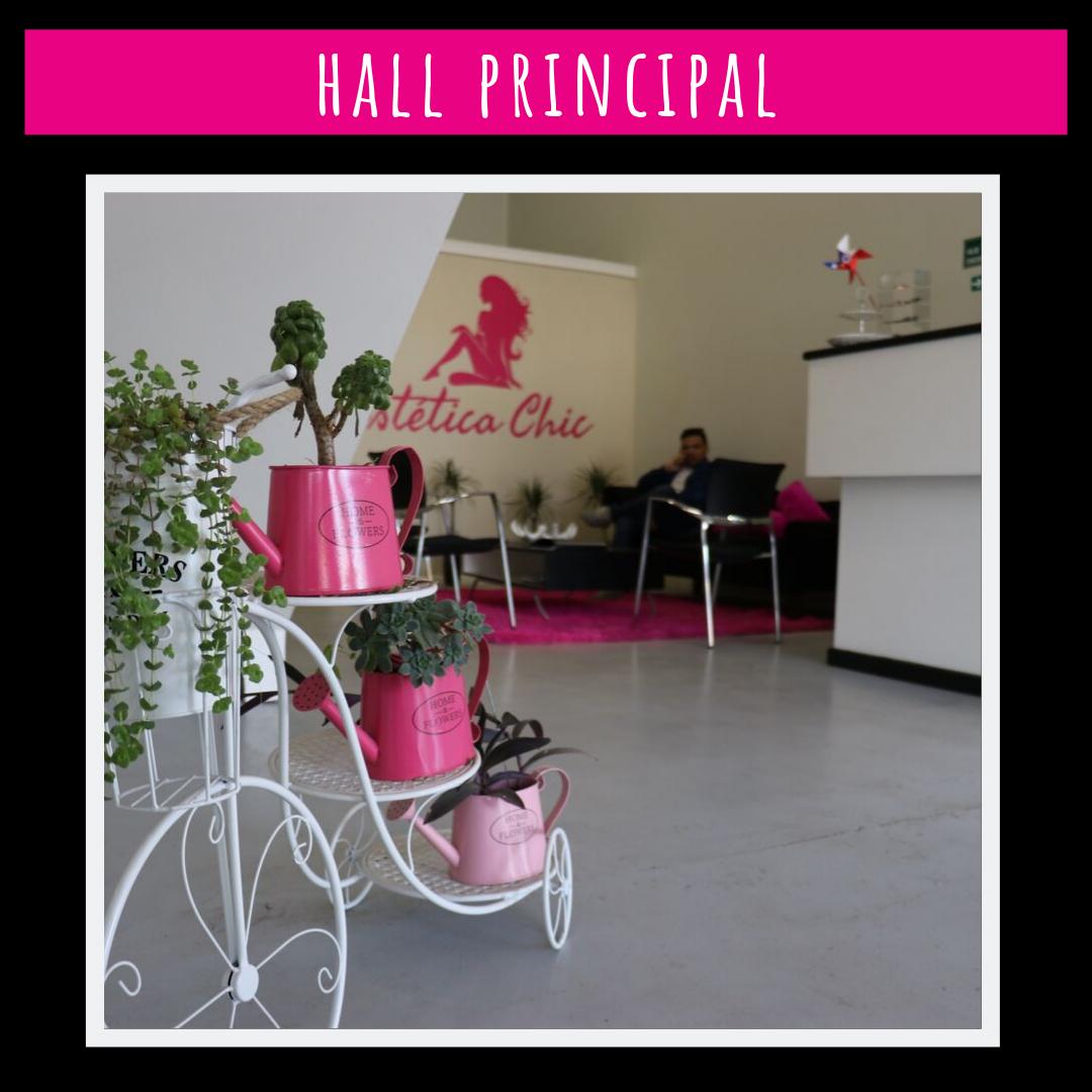 hall principal planta