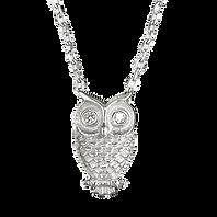 R9945C_%C3%82%C2%A329_silver_owl_necklac