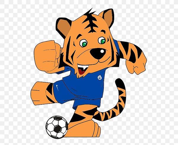 tiger-cat-aosta-calcio-511-football-png-