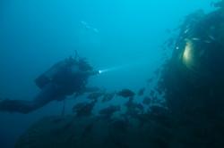 Plongée profonde