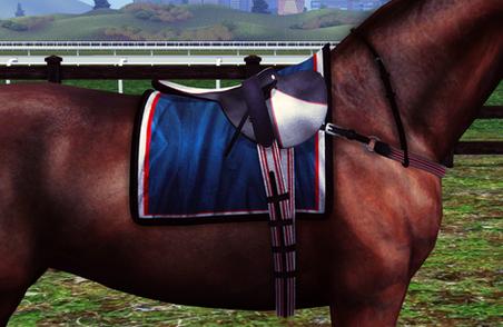 racingsaddle.png