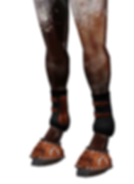 newwesternleatherboots1.png