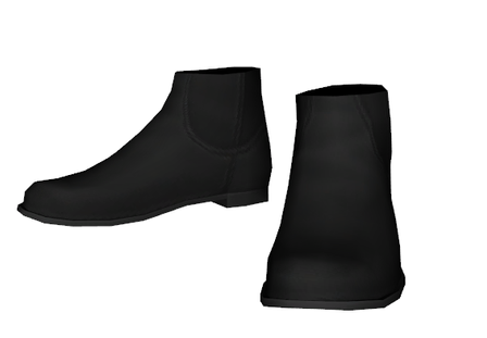 ankleboots1.png