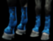 theraputicboots.png