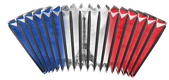 Bellows for accordions france flag image customizing