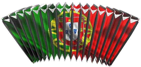 Bellows for accordions Portuguese flag image customizing