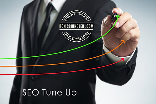 SEO Tune Up (Wix Site Only)