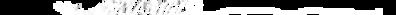 logo ARLANDIS 2.png