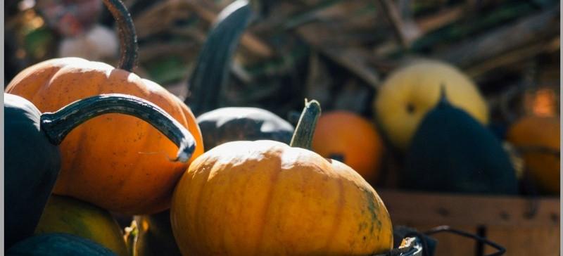 Halloween Treats.....