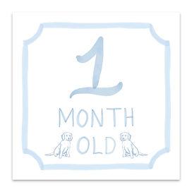 Blue Baby Square Milestone 1.jpg